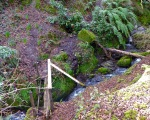 Castlehave Holy Well